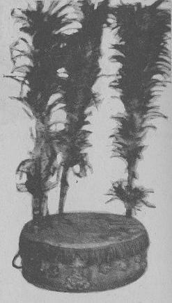 パンディエロ型センセリボ(エリボ、セセ)